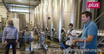 Nachhaltiger Weinanbau im Weingut Braunewell in Essenheim - Allgemeine Zeitung