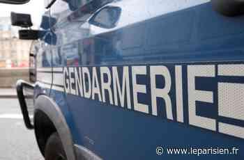 Magny-en-Vexin : deux jeunes interpellés après le car-jacking - Le Parisien