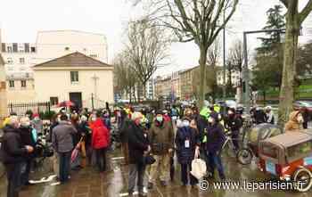 Chaville : les arbres de la D 910 font sortir les militants du bois - Le Parisien