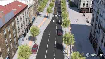 Hauts-de-Seine. À Chaville, quel avenir pour les arbres de la RD910 ? - actu.fr