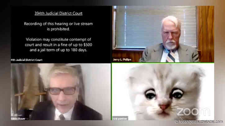 'I'm Here Live, I'm Not A Cat': Texas Attorney Struggles To Remove Cat Filter During Zoom Court Hearing