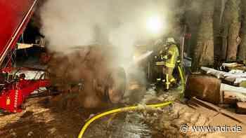 Uplengen: 250 Kühe aus brennendem Stall befreit - NDR.de