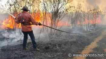 Brigadistas de Protección Civil listos para la temporada de incendios en Tixkokob - PorEsto