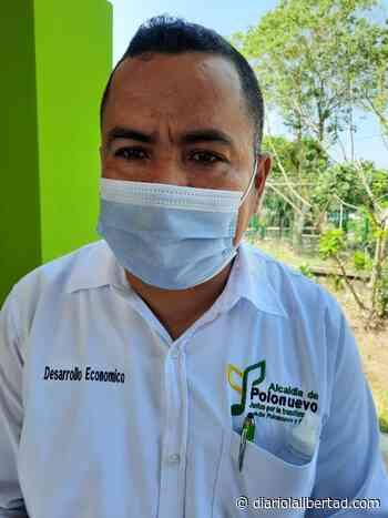 Polonuevo desarrolla nuevos proyectos para fortalecer la seguridad alimentaria del campesino - Diario La Libertad