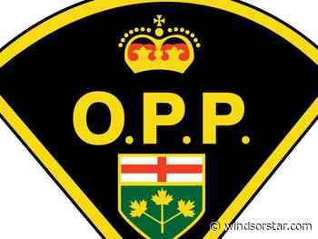 Kingsville man charged following theft from Comber business - Windsor Star