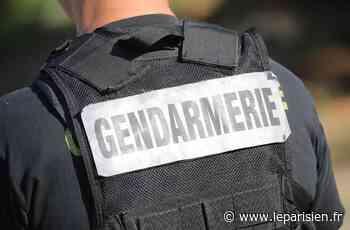 «Ils ont osé…» : des gendarmes de Maisons-Alfort soupçonnés de vol d'alcool à bord d'un avion - Le Parisien