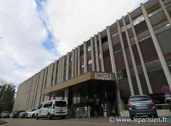 L'hôpital Marie-Lannelongue restera bien au Plessis-Robinson - Le Parisien