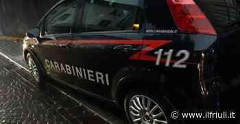 09.10 / Topi d'appartamento in azione a Cassacco - Il Friuli