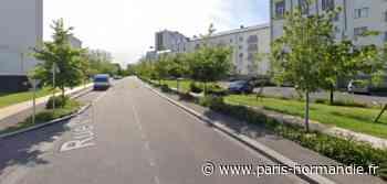 Deux personnes interpellées dans une opération antistupéfiants à Canteleu - Paris-Normandie