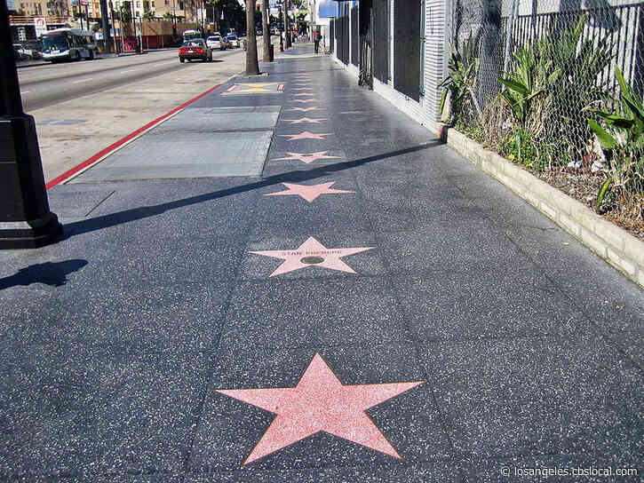 Walk of Fame Stars Honoring 'Love Story' Actors, Ali MacGraw, Ryan O'Neal To Be Unveiled