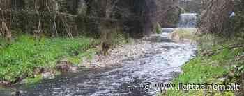 Triuggio: le acque della Brovada diventano nere, controlli di Arpa - Il Cittadino di Monza e Brianza