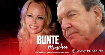 Pamela Anderson, Gerhard Schröder & Co.: Corona bei den Promis: Hochzeitsschwindel, Tod & illegale Party - BUNTE.de