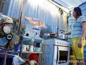 Las 5 familias que viven en carpas deberán salir de El Guabito   El Diario Ecuador - El Diario Ecuador