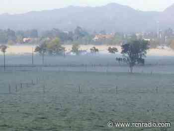 Heladas destruyeron más del 60% de cultivos en Gámeza, Boyacá - RCN Radio