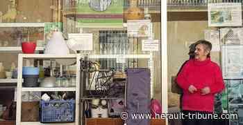 SERIGNAN - Les chats libres ont aussi leur boutique - Hérault-Tribune