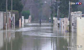 Inondations : Esbly, en Seine-et-Marne, affronte sa quatrième crue en cinq ans - TF1