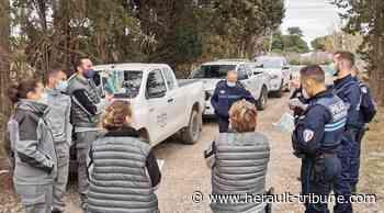 ACTUALITÉS : SETE / MARSEILLAN - Opération de Police de l'Environnement : Hérault Tribune - Hérault-Tribune