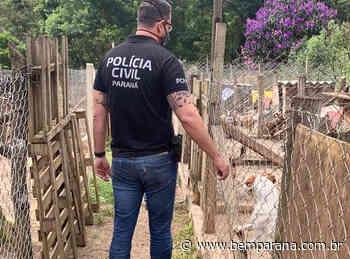 'Protetora de animais' é presa por maus-tratos em Quatro Barras. Veja video - Bem Paraná