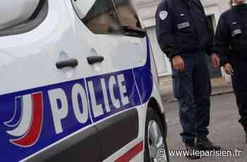 Villiers-le-Bel : blessé au visage à coup de gomme-cogne - Le Parisien