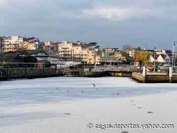 Río Támesis se congela en Londres tras histórico descenso de la temperatura en Reino Unido - Yahoo Deportes