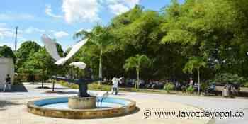 Sancionados cinco exconcejales de San Luis de Palenque por elección de personero - Noticias de casanare - La Voz De Yopal