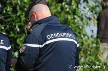 Boran-sur-Oise : les gendarmes stoppent la soirée d'anniversaire - Le Parisien