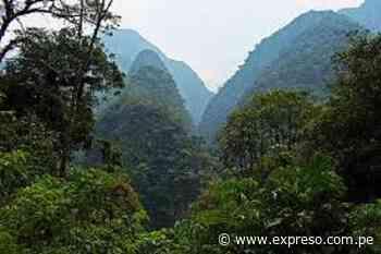 Piden cuidar Reserva de Biósfera Oxapampa - Expreso (Perú)