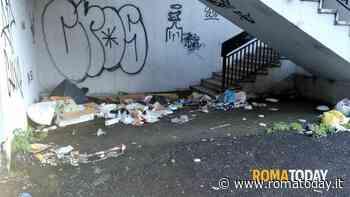 Via Basiliano, le immagini della sporcizia - RomaToday