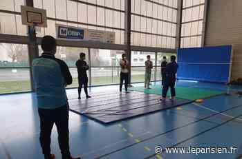 Sartrouville : des activités sportives pour les jeunes autistes - Le Parisien