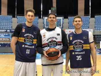 Cohen, Birutis y Czerapowicz disputarán las Ventanas FIBA con sus selecciones - Piratas del Basket