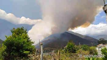 El Pitazo Cerca de 600 hectáreas han sido consumidas por incendio en Bailadores - El Pitazo