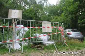 À Orry-la-Ville, on peut désormais signaler les dépôts sauvages en un clic - Le Parisien