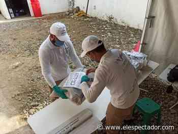 Unidad de Búsqueda protegió 416 cuerpos en Puerto Berrío (Antioquia) - El Espectador