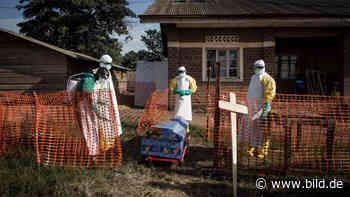 Erst Corona, jetzt Ebola? So groß ist die Gefahr für Deutschland - BILD