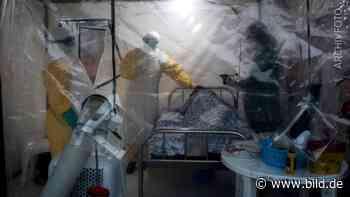 Ebola-Ausbruch in Guinea – schon vier Tote, Epidemie-Lage ausgerufen - BILD