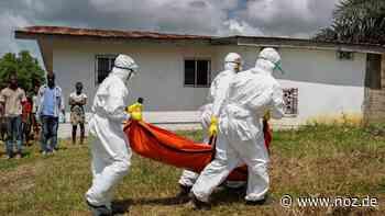 Vier mutmaßliche Ebola-Tote in Guinea - NOZ