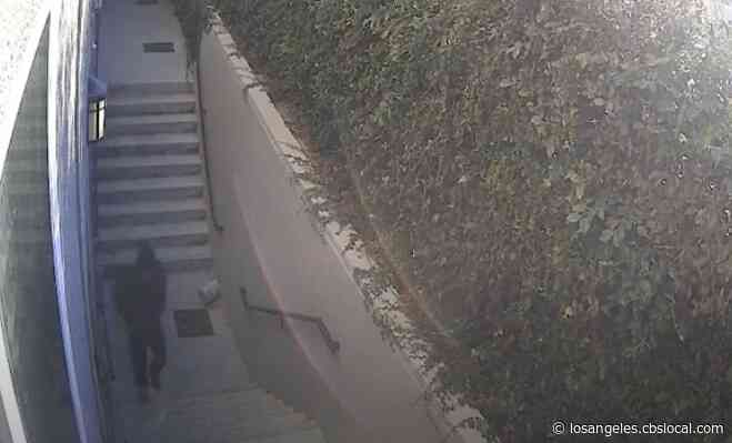 Police Seek Northridge Shooter During Attempted Carjacking