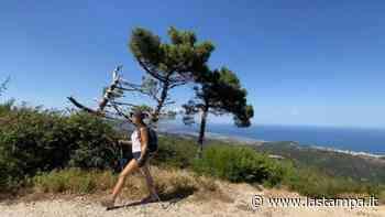 Foreste, borghi arroccati e cultura arbëreshë: con il Cammino Basiliano si attraversa la Calabria a piedi - La Stampa