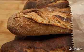Seine-Saint-Denis. A Noisy-le-Sec, des sachets de pains pour lutter contre les violences conjugales - Actu Seine-Saint-Denis