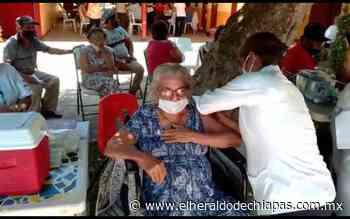 En Tonalá, Arriaga y Pijijiapan se vacunarán 400 adultos mayores - El Heraldo de Chiapas