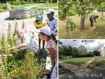 Seine-et-Marne. Savigny-le-Temple lance son programme d'agriculture urbaine - actu.fr