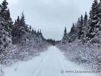 Outdoor Winter Activities in Grand Falls-Windsor - To Do Canada