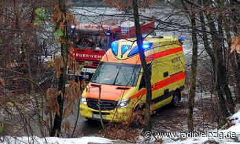 Leiche im Westbruch Brandis entdeckt - Radio Leipzig