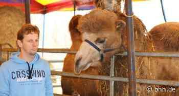 Peta fordert: Zirkus Probst in Oberhausen-Rheinhausen soll Tiere für immer abgeben - BNN - Badische Neueste Nachrichten