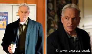 NCIS season 19: Will NCIS be cancelled if Mark Harmon leaves? - Express
