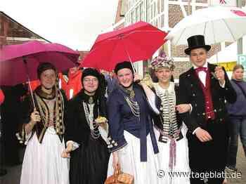 Blütenfest-light in Jork wegen Corona-Risiko - Jork - Tageblatt-online
