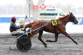 Critérium des Jeunes - Prix Comte Pierre de Montesson, dimanche à Vincennes. Vers une course INOUBLIABLE... - Canal Turf