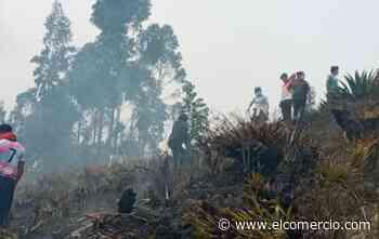 La Fiscalía indagará sobre las posibles causas del incendio forestal en Ambato - El Comercio (Ecuador)