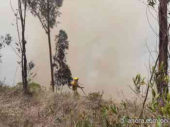 Aún no se determinan causas de incendios forestales en Ambato - La Hora (Ecuador)