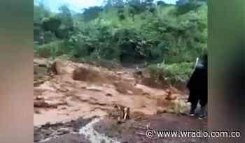 Atienden emergencias por lluvias en Caloto y Toribío, Cauca - W Radio